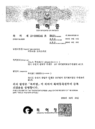 특허제10-0906141호
